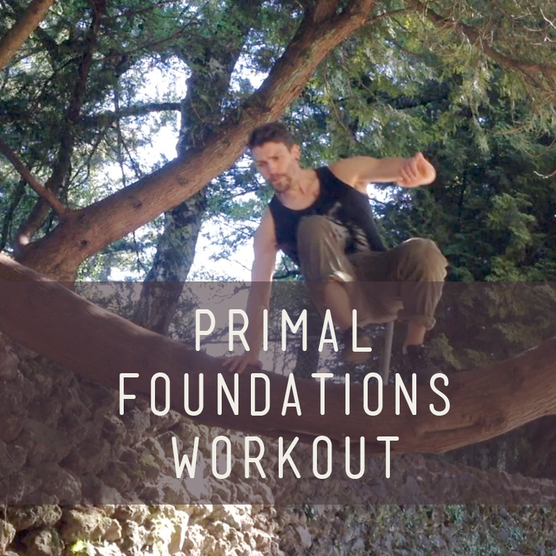 Primal Foundations Workout
