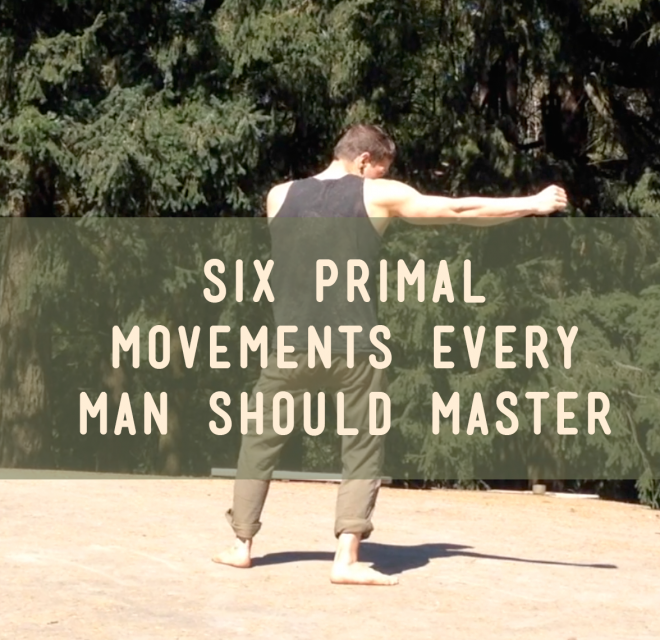 six-primal-movements-post-image