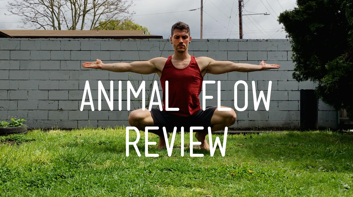What is Animal Flow and Who Is it For? Here's the Breakdown